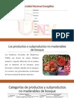 DIAPOSITIVA los productos no maderables Guerda.pptx