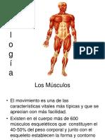 Musculos.-fUNCIONES.pdf