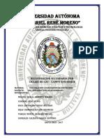 Ciclaje de gas campo San Roque TERMINADO.pdf