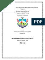 INSTITUTO DE.docx