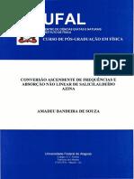 AMADEU BANDEIRA DE SOUZA .TESE_INSTITUTO DE FISICA.pdf