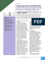icns_14_5-6_21.pdf