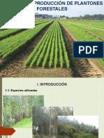 Producción de Plantones (C-2)