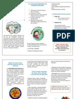 BUENAS PRACTICAS DE MANIPULACION PLEGABLE.docx