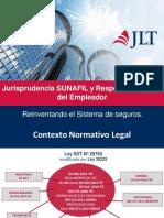 Esperiencia en la fiscalizacion del estado peruano.pptx