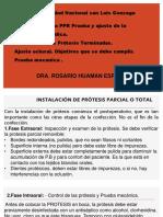 TEMA 14 copia.pdf