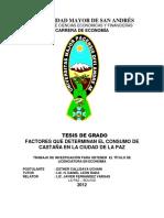 T-1313.pdf