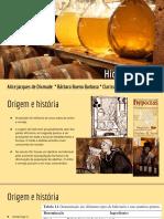 Hidromel 01.pdf