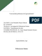 Diferencias Finitas Reporte