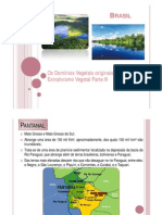 5-Os Dominios Vegetais e o Extrativismo Vegetal