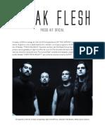 BLEAK FLESH español.pdf