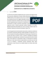 informe-chuckrut.docx