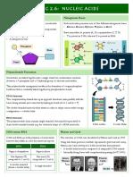 2.6 Nucleic Acids.pdf