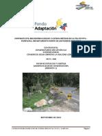Rev RPC INFORME AJUSTES PR71+368 REV 7 (1).pdf
