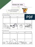 Guía ciclos de vida 2° basico.pdf