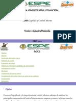Alejandra_ Capitulo 7 - Control Interno