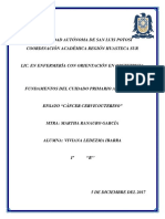 Ensayo-Cáncer-Cervicouterino-1.docx