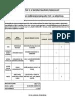 Matriz de Jerarquización con Medidas de Prevención y Control Frente a un PeligroRiesgo.xlsx