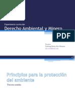 derecho ambiental y minero