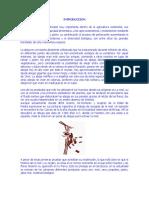 PROYECTO FINAL HIDROMIEL.docx