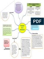 MAPA CONCEPTUAL 3 PROCESOS DE LA PERCEPCION.pdf