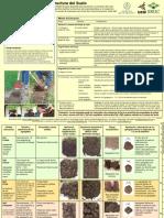 JOSE TRUJILLO - Evaluación visual de la estructura del suelo.pdf