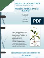 JOSE TRUJILLO - SEMINARIO 2. Nutrición mineral en las plantas.pdf