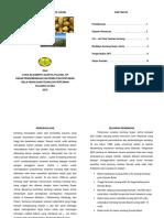 Brosur Budidaya Kentang Super Johne PDF
