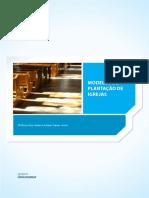 MODELOS DE PLATAÇÃO DE IGRJAS.pdf