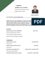 CV Erick Licas.pdf