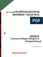 Sesion 8 Diploma SST Ing Vidauro Carpio