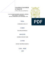 Informe CIP