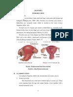 Case Study Cycte Ovarium ( English ) Rev 1