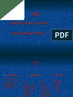 Conceptos de TIC 1