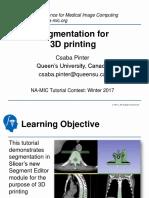 SegmentationFor3DPrinting_TutorialContestWinter2017