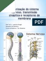 BIOFISICA DO SN.pptx