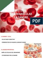 ANATO_Y_FISIO___SANGRE-1[1]2.pptx