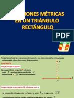 TRIÁGULOS RECTANGULOS. TEOREMAS.pdf