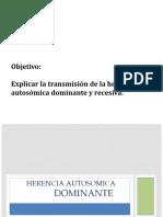 herenciaautosomicadominanteyrecesiva-170531221436.pptx