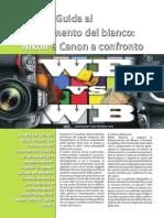 208255_articolocontenuto_527077_pdf.pdf