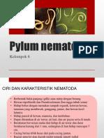 Pylum nematoda PPT KEL 6.pptx