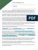 Patologia Ortopedica Del Pie
