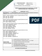 Guía Práctica de Laboratorio Docente - Práctica IP (2) (2).docx