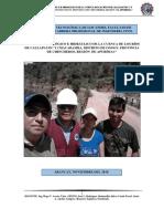 ESTUDIO HIDROLOGICO E HIDRAULICO DE ONGOY.pdf