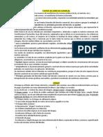 COMERCIAL TODO Maby Basualdo-1.docx