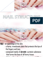 NAIL STRUCTURE.pptx
