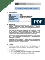 PLAN DE TRABAJO GC- 2019 Oficial -Ber.docx