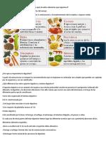 El sistema Digestivo.docx