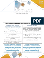 7- Evaluación Final-Coevaluación-Formato (2) (1).docx