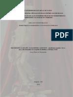 DISSERTAÇÃO - LUCAS PEDRO.pdf
